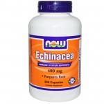 Now Foods 紫雏菊根 - 免疫力 400 mg (250 Caps)